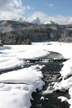 0218雪晴れの谷沢.JPG